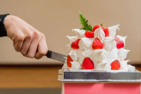 Strawberry Cake Standard-Bild
