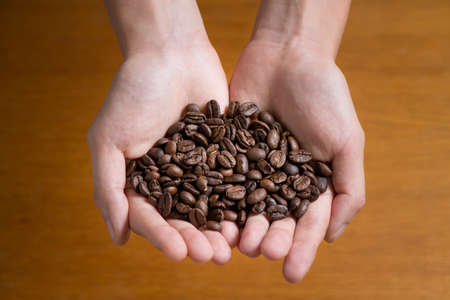 Womans hands holding coffee beans