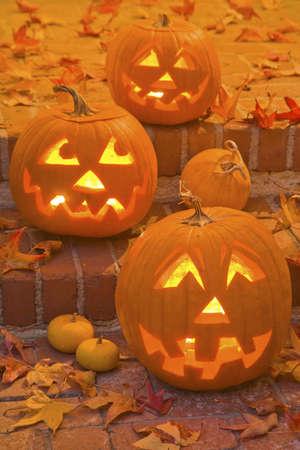 agribusiness: Halloween Jack-O-Lanterns are lit at night