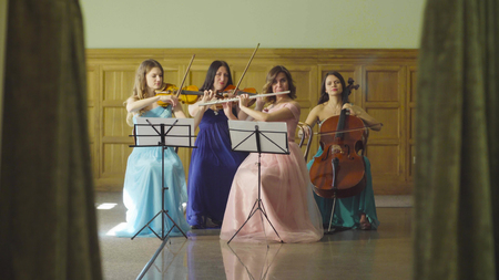 Quartet of young women playing classic music Stock Photo