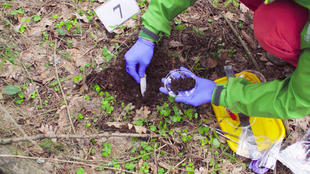 Scientist ecologist in the forest taking samples of soil Stock Photo