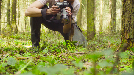 The ecologist making photos in the forest. Stock Photo