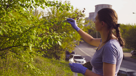 Woman ecologist getting samples of foliage near the factory
