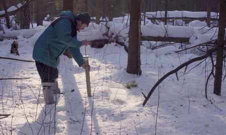 Ecologist getting samples of snow