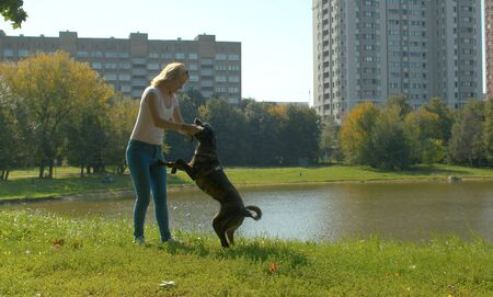 Young woman playing with the dog in the park. Dog standing on its hind legs.