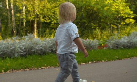 Cute toddler walking along the road in the park. Early autumn, yellow leaves on the road. Rear view
