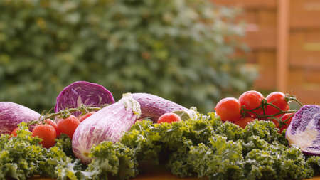 Close up fresh vegetables on the table in drops of water. Harvesting in a country farm. Healthy fresh food concept