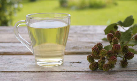 Close-up a transparent cup of dewberry leaf tea on the old wooden table outside. Fresh raw dewberry on the table. Herbal medicine concept
