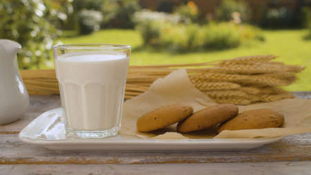 Close up glass of milk, cookies and ears of wheat on a wooden table in the garden of a country house