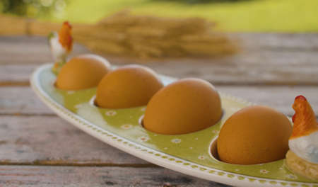 Close-up shot of fresh brown chicken eggs in egg box on green natural background. Healthy fresh food concept