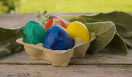 Close up multicolored painted Easter eggs in egg box and rabbits ear plant on wooden table in the garden. Holiday concept 写真素材