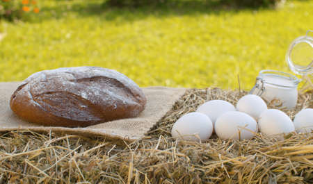 Close up sour cream, traditional baked bread and chicken eggs on fresh hay. Natural organic handmade food 写真素材
