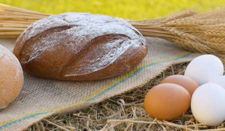 Close up sheaf of ripe rye ears, traditional baked bread and chicken eggs on fresh hay. Natural organic handmade food