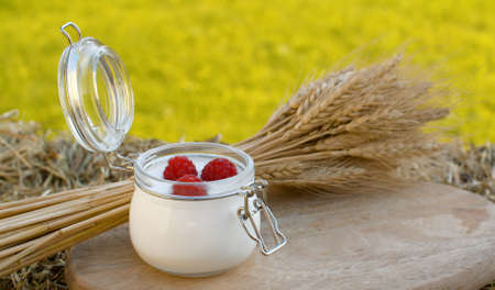 Close up shot of yogurt with raspberries and sheaf of ripe rye ears on a wooden cutting board in the garden at summer day