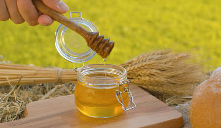 Close up hand taking honey with honey spoon. Traditional baked bread and sheaf of ripe rye ears on a fresh hay. Healthy food concept. Summer still life 写真素材