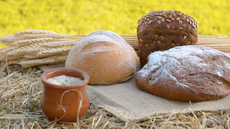 Close up loafs of traditional baked bread, ripe wheat ears and clay pot on jute burlap. Natural organic handmade food
