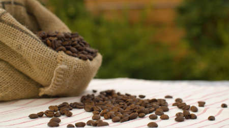 Close-up coffee beans in a burlap jute sack on a table in the garden