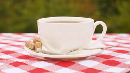 Close-up of cup of hot tea with raw sugar on a table in the garden. Steam rises above the cup