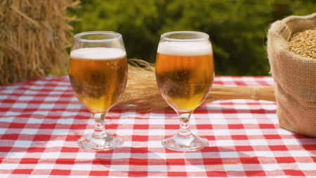 Close up two glasses of beer, ripe wheat ears, fresh hay and barley or wheat grains in burlap jute sack outdoors on natural background 写真素材
