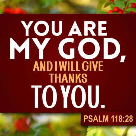 Thanksgiving Psalm 118:28