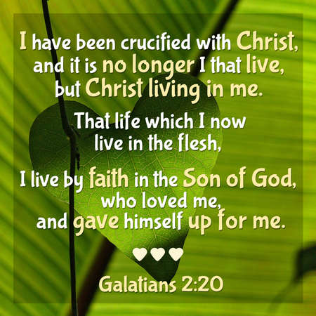 I have been crucified with Christ, and it is no longer I that live, but Christ living in me. That life which I now live in the flesh, I live by faith in the Son of God, who loved me, and gave himself  写真素材