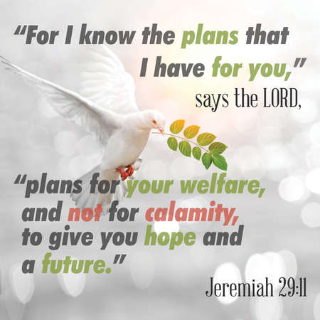 """For I know the plans that I have for you,� says the LORD, ""plans for your welfare, and not for calamity, to give you hope and a future.� Jeremiah 29:11"