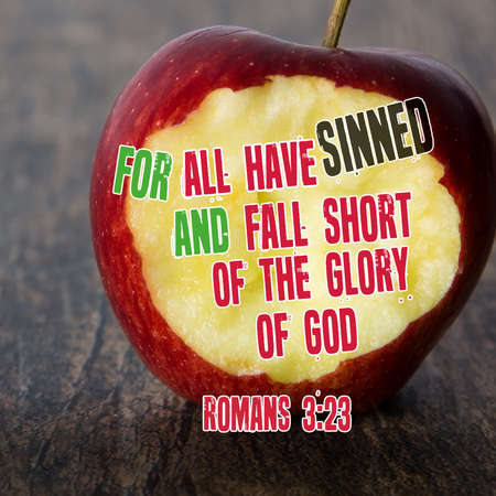 For all have sinned, and fall short of the glory of God. Romans 3:23