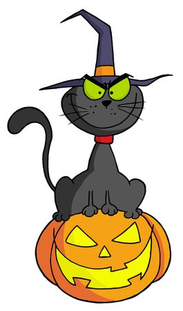 Black Witch Cat Sitting On Top Of A Jack O Lantern