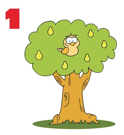 Une perdrix dans une arborescence de pear  Banque d'images
