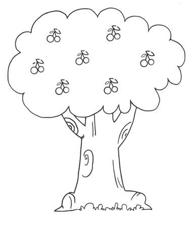 Coloring Page Outline Of A Cherry Tree  Vector