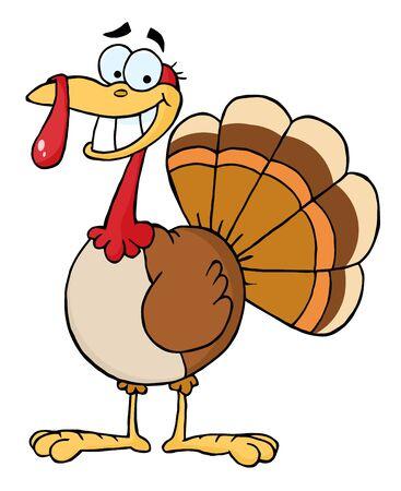 turkey day: Turkey Mascot Cartoon Character