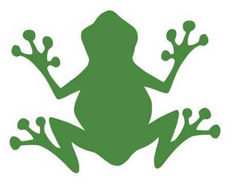 rana venenosa: Rana silueta verde