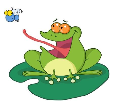 mere: Frog Catching Bug  Illustration
