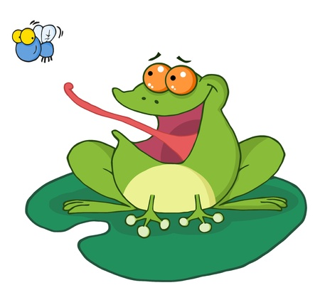Frog Catching Bug Stock Vector - 8721153