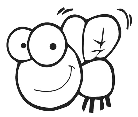 housefly: Outlined Fly Cartoon Character