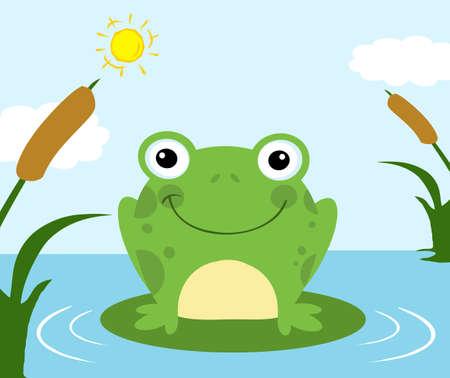 toad: Frog Cartoon Character