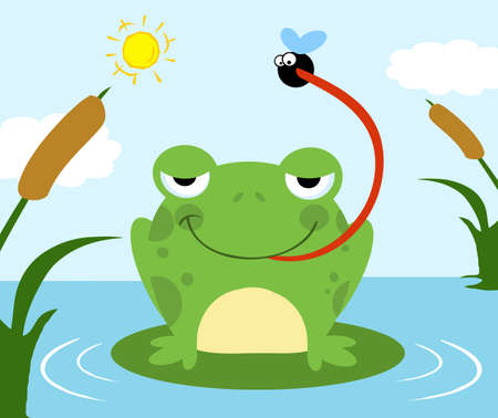 Frog Catching Fly Vector