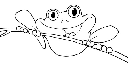 Outlined Happy Red Eyed Tree Frog