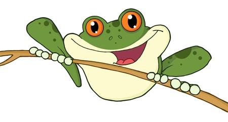 tree frogs: Manzana roja ojos rana verdes
