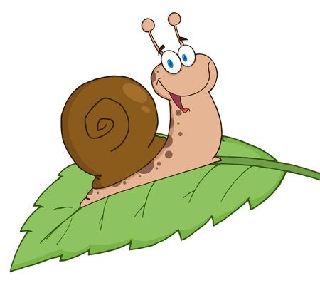 Happy Cartoon Snail On A Leaf Vector