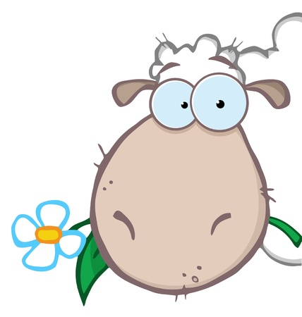 Sheep Head Carrying A Flower In Its Mouth