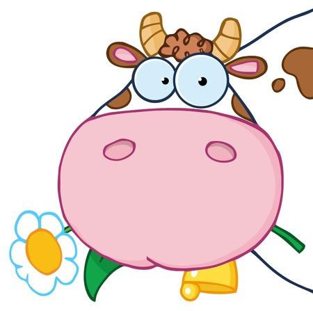 vaca caricatura: Personaje de dibujos animados de cabeza de vaca con una flor en la boca