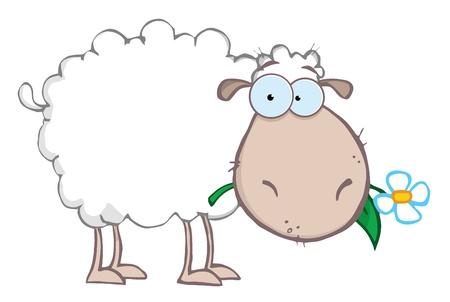 Personaje de dibujos animados de ovejas blancas comer una flor