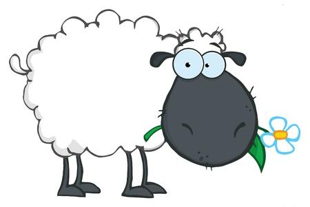 oveja negra: Personaje de dibujos animados de oveja negra comer una flor