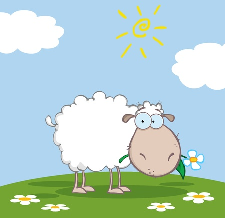 White Sheep Cartoon Character Eating A Flower On A Meadow  Vector