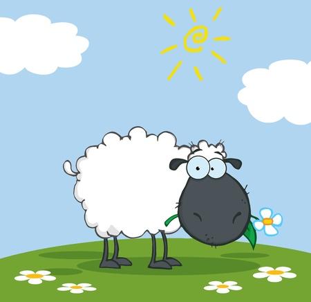 pasen schaap: Zwarte schapen stripfiguur eten een bloem op een weide  Stock Illustratie