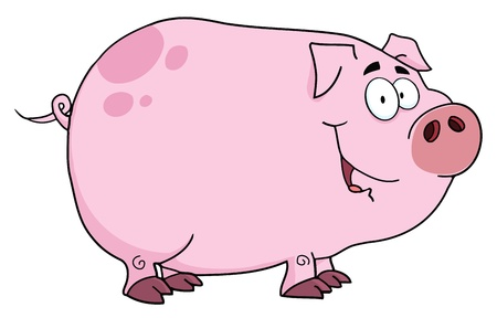 hog: Pig Cartoon Character  Illustration