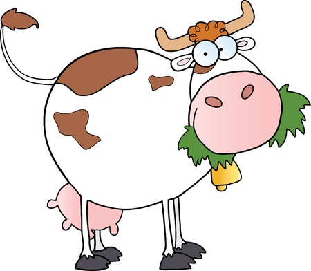 White Dairy Cow Chewing On A Grass Stock Vector - 9789468