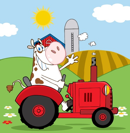 farm land: Happy Cow Farmer In Red Tractor Waving A Greeting On His Farm