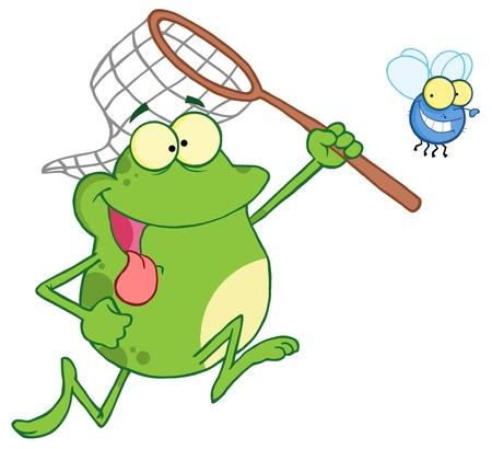 grenouille: Fly Frog Chasing Avec un filet